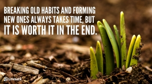 Breaking-old-habits-and-forming-new-ones-always-takes-time-but-it-is-worth-it-in-the-end.